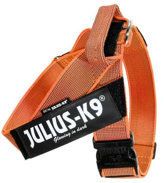 Julius K9 IDC®-Gurtbandgeschirr Color & Gray, Gr. 3 (82-116 cm), orange