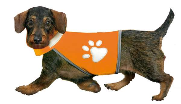 Hunde Sicherheitsweste Safety Dog, orange reflektierend