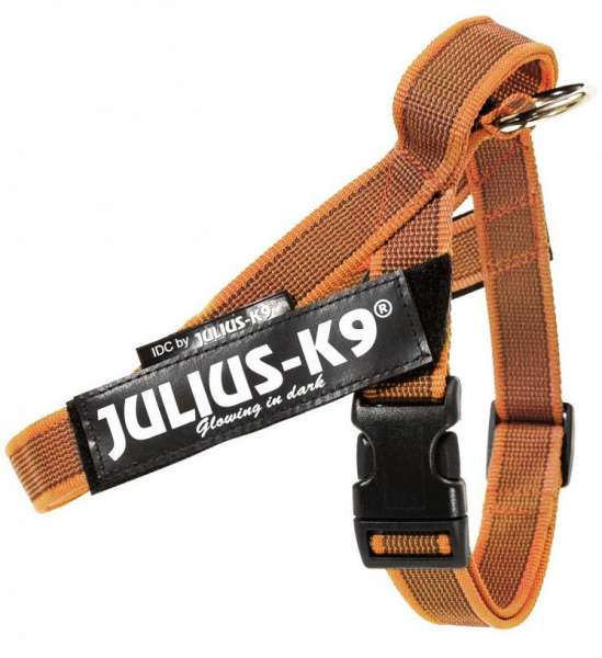 Julius K9 IDC®-Gurtbandgeschirr Color & Gray, Gr. Mini (49-67 cm), orange