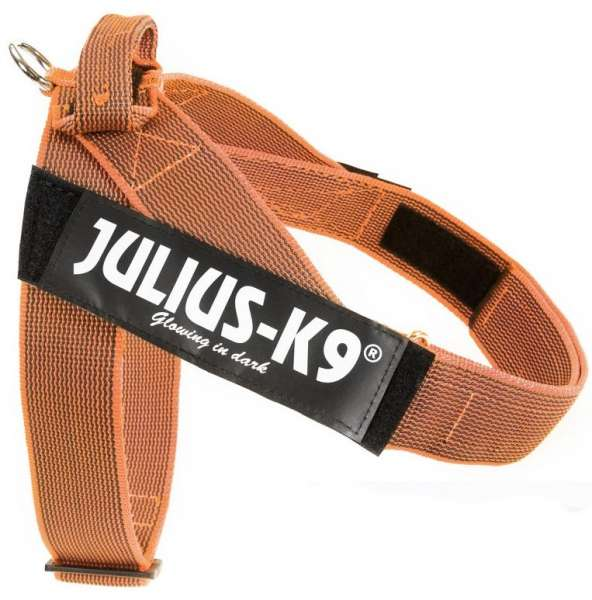 Julius K9 IDC®-Gurtbandgeschirr Color & Gray, Gr. 2 (67-97 cm), orange