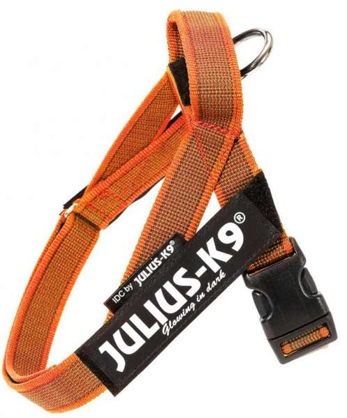 Julius K9 IDC®-Gurtbandgeschirr Color & Gray, Gr. Mini-Mini (40-53 cm), orange
