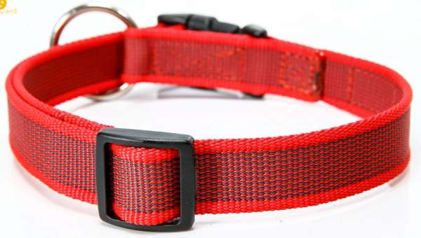 "Julius K9 Halsband ""Color & Gray"" grau-rot, 20mm"