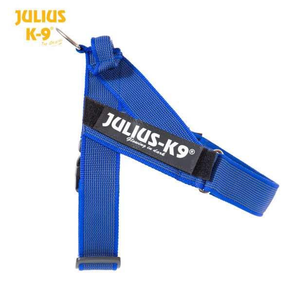 Julius K9 IDC Gurtbandgeschirr Color & Gray, blau